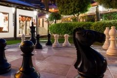 1_chess